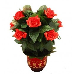 BLOOMING ROSE BUSH - REMOTE CONTROL - 10 FLOWERS - ORIGINAL VERSION