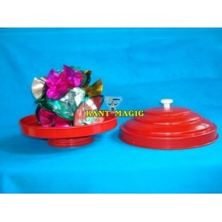 DOVE PAN CLASSIC RED